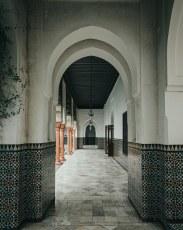Grande_Mosquée-16