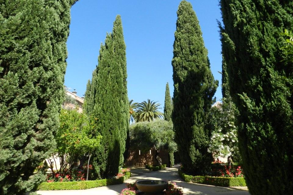jardines de El Alcazar de Jerez de la Frontera Cadiz 01
