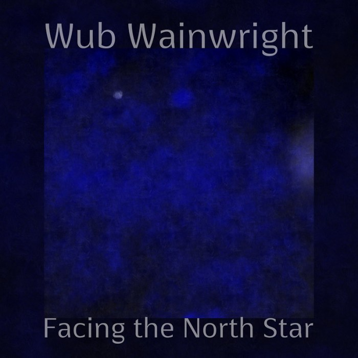 Wub Wainwright - Facing The North Star 2013