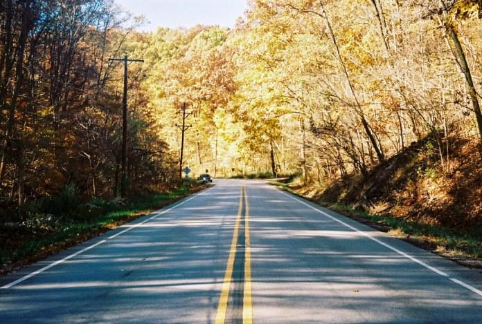 US 41