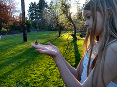 Letting the Painted Ladies Go