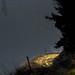 Andorra camis & rutes: La Massana, Vall nord, Andorra
