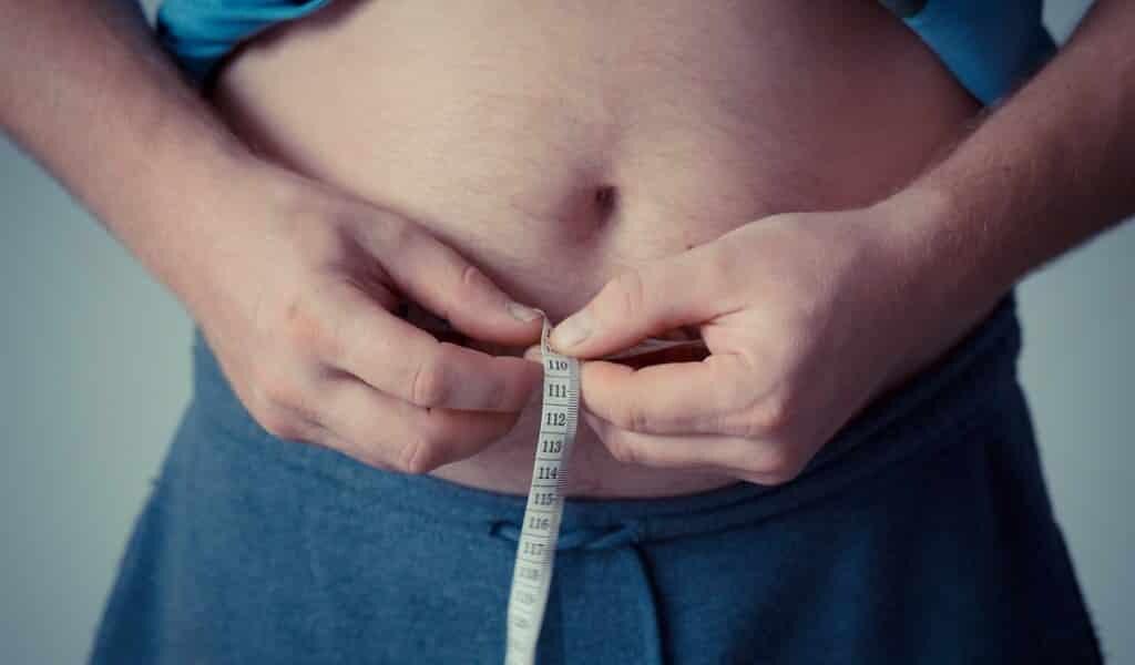une-protéine-poutr-traiter-obésité-plus-efficacement