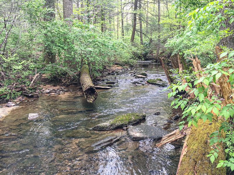 Green Gorge Park14