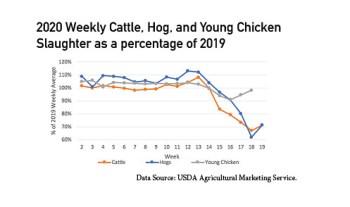 5-11-2020-Chicken-Hog-Beef
