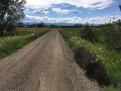 June 24, 2019 / Road at Work