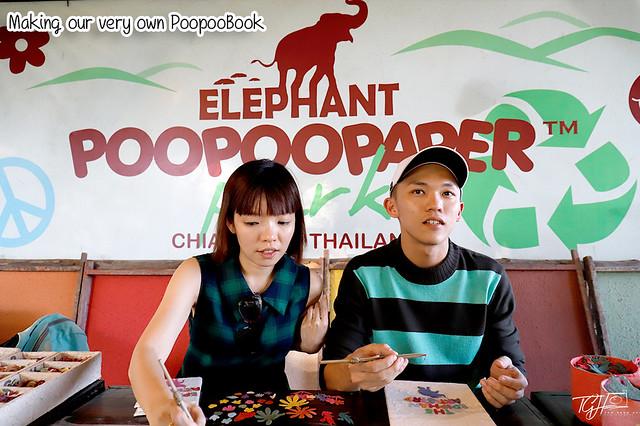 Epiphany Duplet Poopoopaper Park