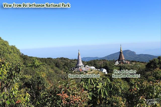 Chiang Mai Local Tours Doi Inthanon National Park