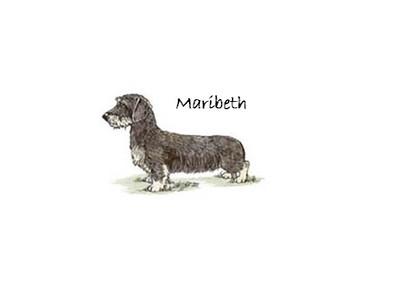 Maribeth Dackel
