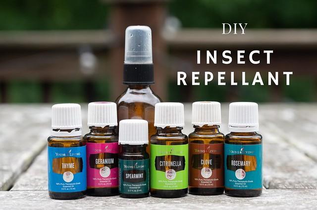 DIY Insect Repellant