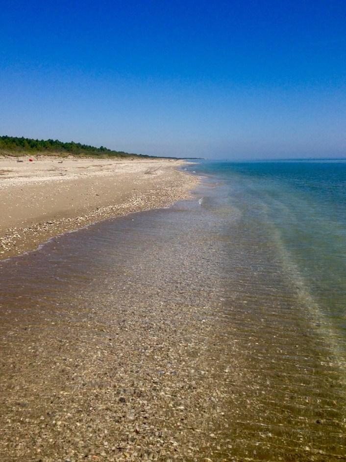 Slow Romagna: Ravenna e la spiaggia della Bassona