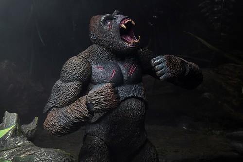 KIng Kong4
