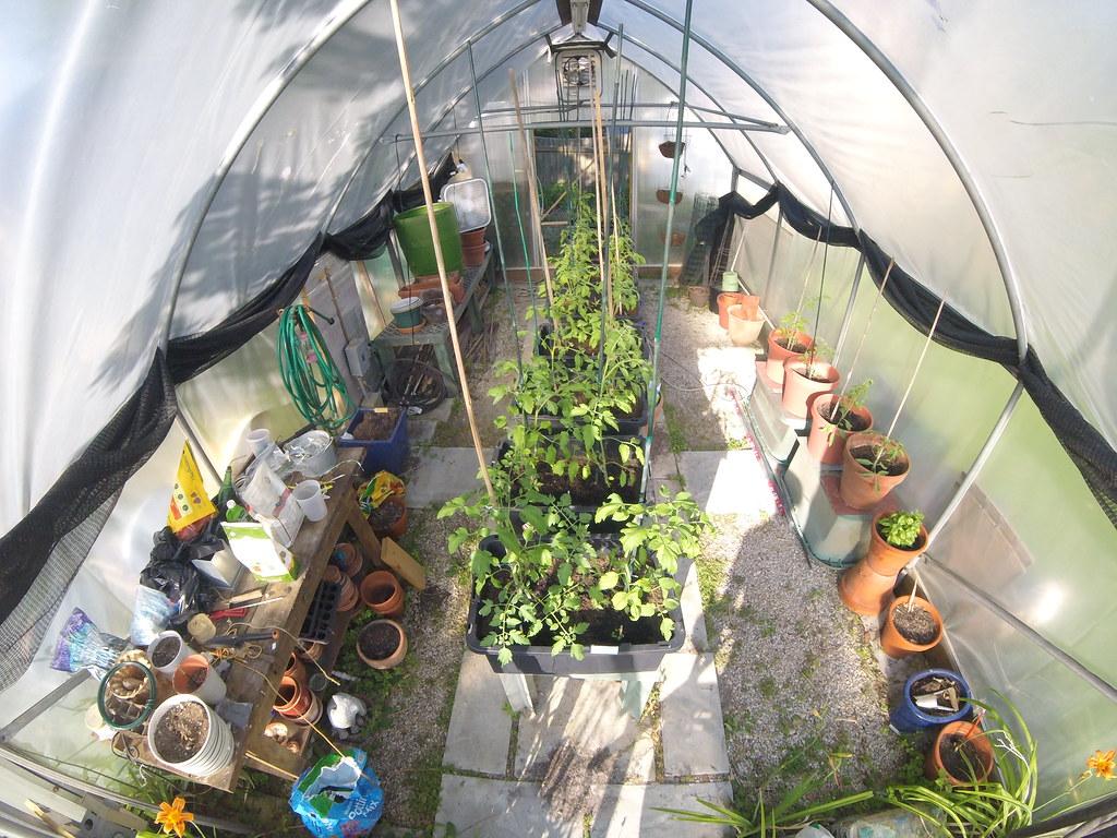 Greenhouse 6.9