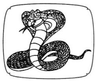 CBSE Class 5 EVS A Snake Charmer's Story Worksheets 4