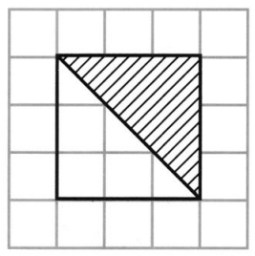 CBSE Class 5 Maths How Many Squares Worksheets 8