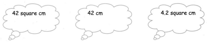 CBSE Class 5 Maths Area and Its Boundary Worksheets 21