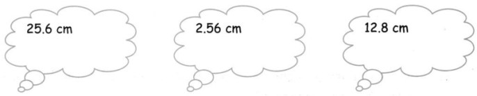 CBSE Class 5 Maths Area and Its Boundary Worksheets 20