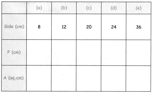 CBSE Class 5 Maths Area and Its Boundary Worksheets 17