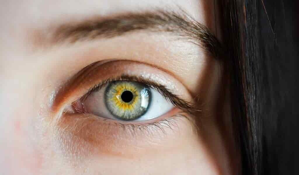des-gouttes-oculaires-pour-prévenir-une-sorte-de-cécité