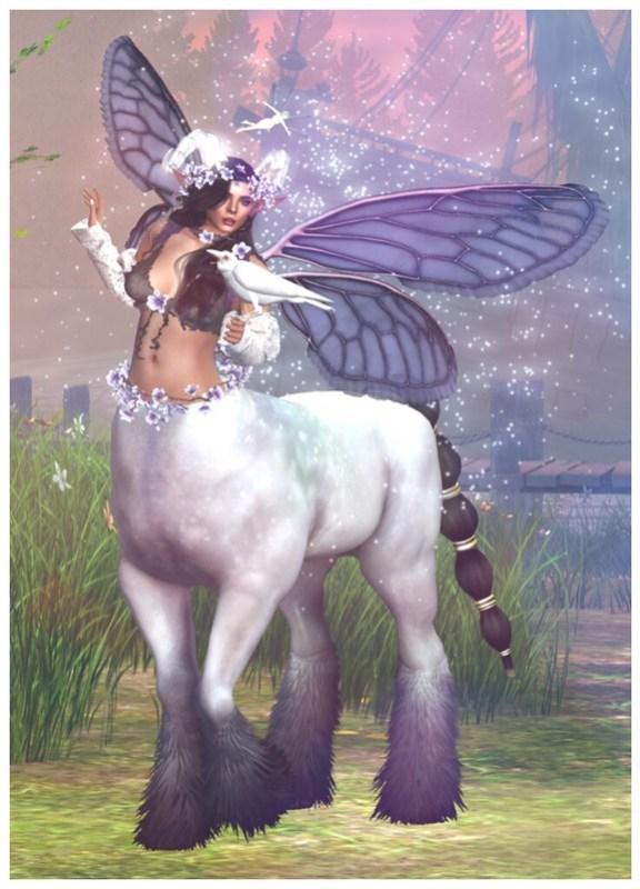 The Great Centaur Gallery - Lil ♥