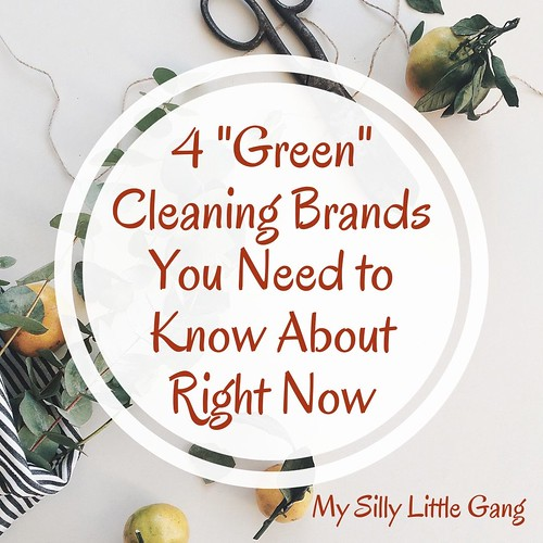 "4 ""Green"" Cleaning Brands You Need to Know About Right Now #MySillyLittleGang"