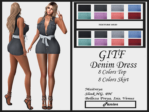 GIFT-Passion-Denim-Dress