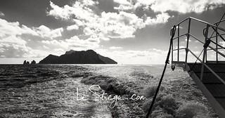 Goodbye Capri