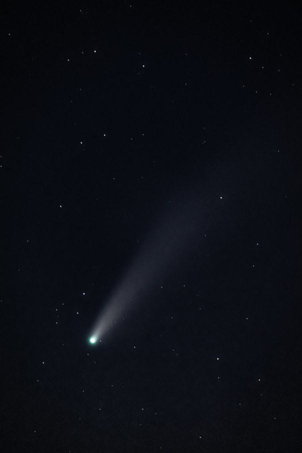 Comet Neowise C/2020 F3