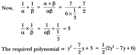 Polynomials Class 10 Extra Questions Maths Chapter 2 with Solutions Answers 17