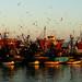 L'heure exquise - Chansons, Renaldo Hanh- Essaouira Maroc