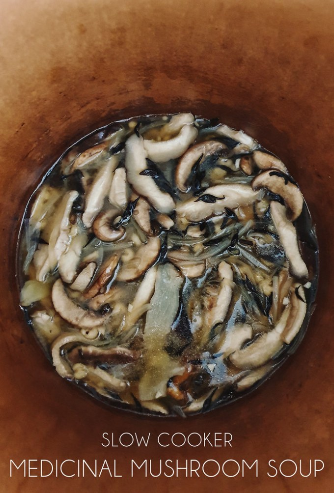 Slow Cooker Medicinal Mushroom Ginseng Stew