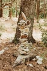 Foret des Cedres-10