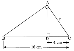 MCQ Questions for Class 10 Maths Chapter 6 Triangles with Answers 9