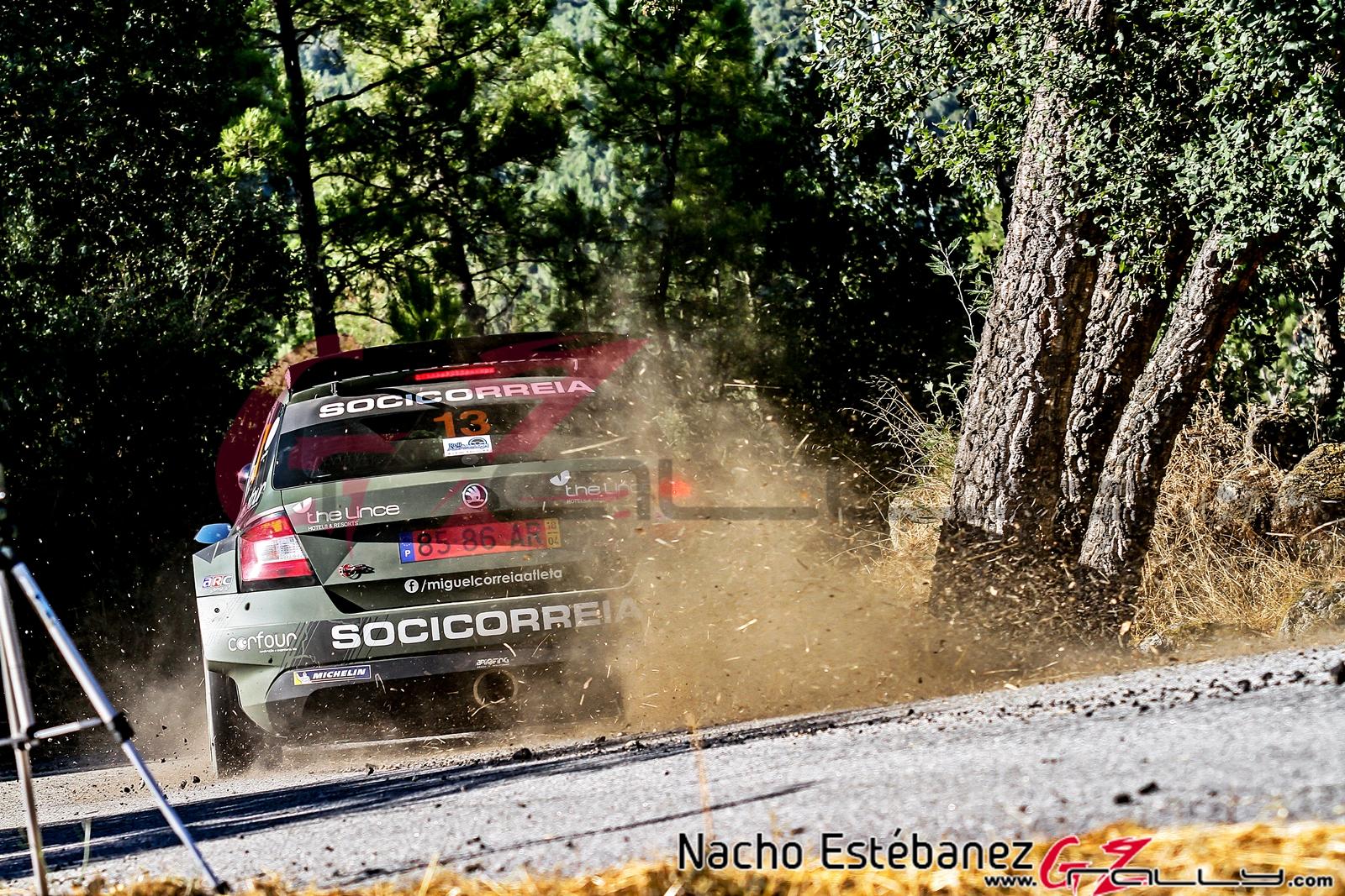 Rally do Alto Támega 2020 - Nacho Estébanez