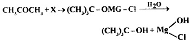 MCQ Questions for Class 12 Chemistry Chapter 12 Aldehydes, Ketones and Carboxylic Acids with Answers 2