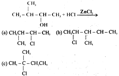 MCQ Questions for Class 12 Chemistry Chapter 10 Haloalkanes and Haloarenes with Answers 2