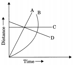 Motion and Time Class 7 Extra Questions and Answers Science Chapter 13 3