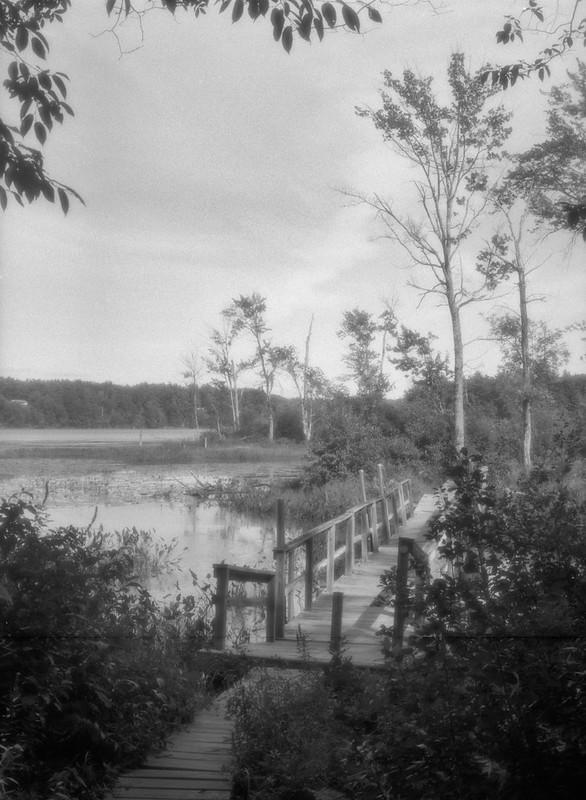 Foot Bridge, Hudson Pointe Preserve