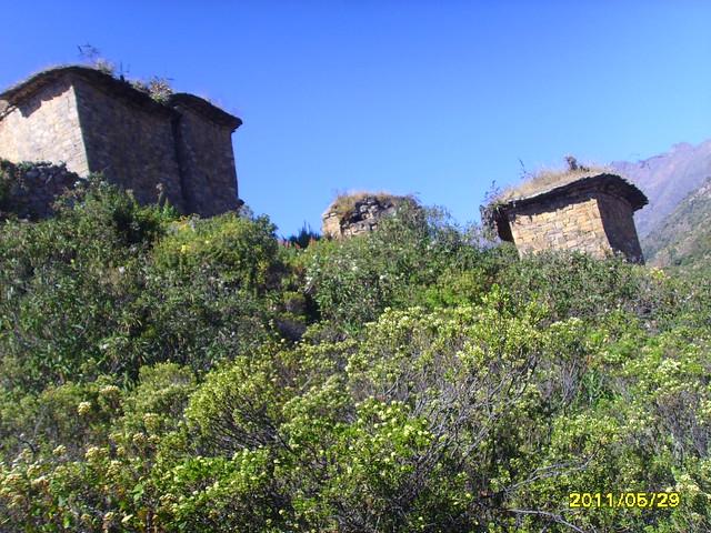 Viaje a Rupac - Huaral