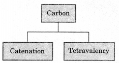 Carbon and its Compounds Class 10 Notes Science Chapter 4 2