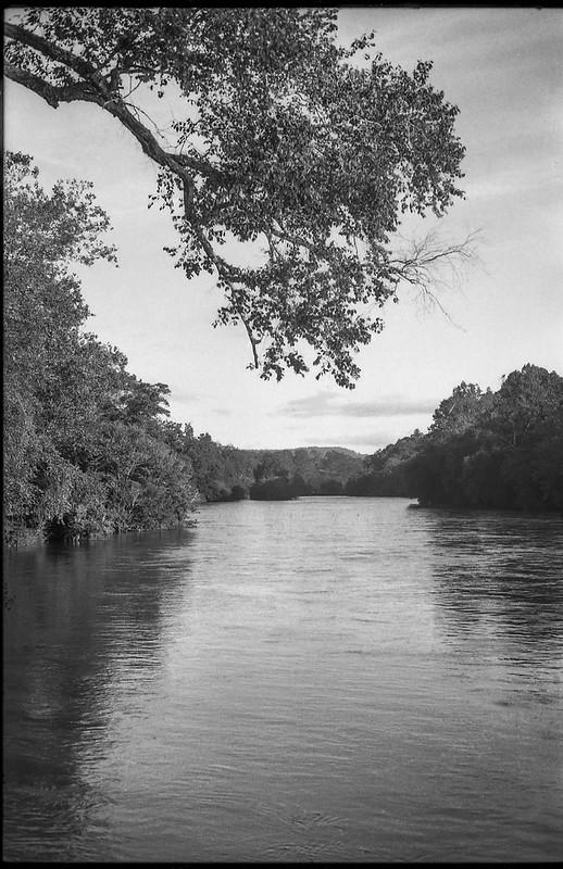 large overhanging tree limb, French Broad River, Biltmore Estate, Asheville, NC, Minolta XG-M, Fomapan 200, HC-110 developer, 9.13.20