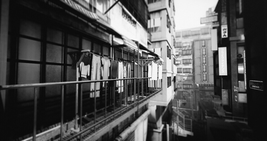 A thousand windows
