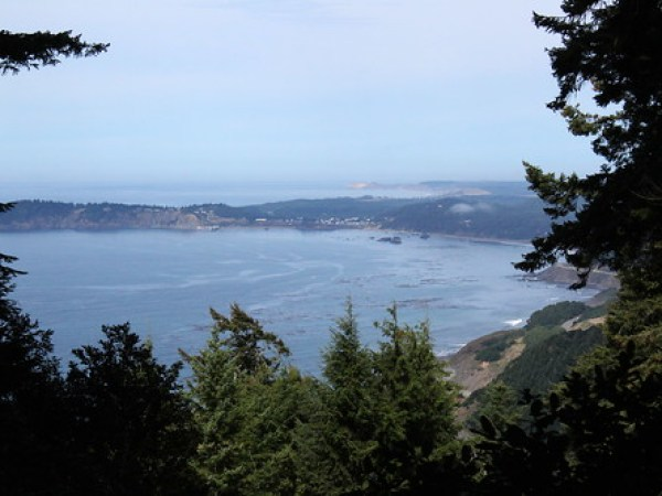 A forest opening provided this view to Port Orford