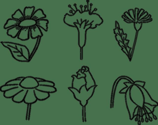 Contoh Gambar Bunga Anak Tk Foto Batik