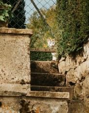 Apremont_Sur_Allier_2020-6