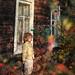 autumn at my window..