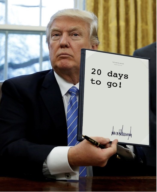 Trump_20days