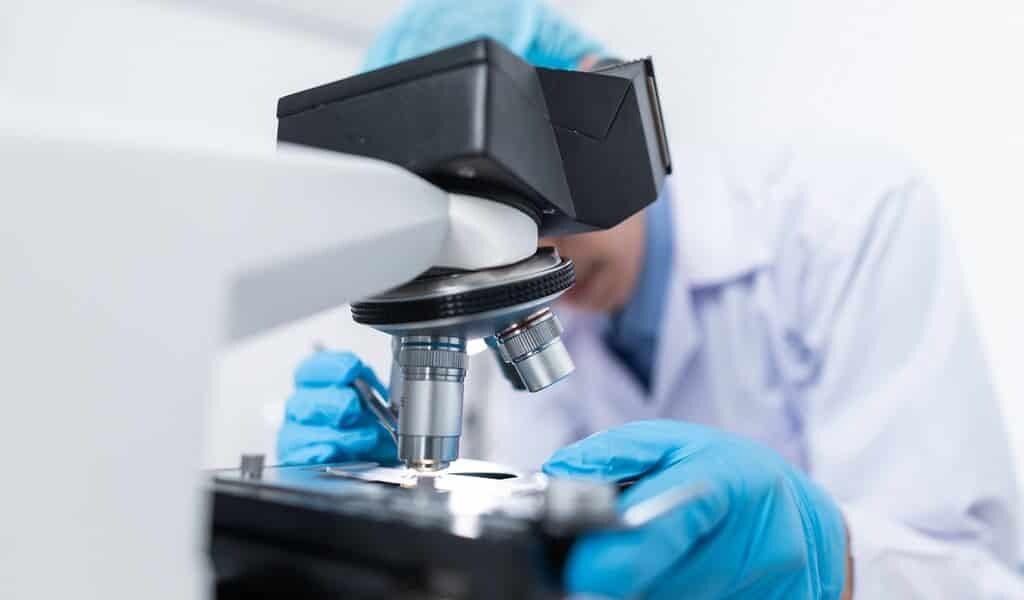 des-molécules-qui-favorisent-la-progession-du-cancer