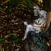 A Fall Tree Fairy Reading