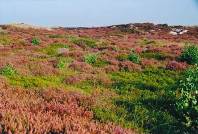 colours of Bornholm